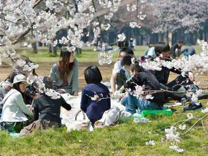 Kinh nghiệm chứng minh tài chính du học Nhật