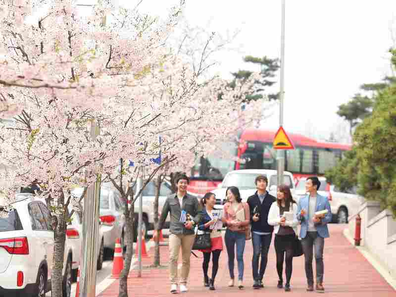 Kỳ nghỉ hè, nghỉ đông du học Hàn Quốc